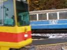 Überführung der Fahrzeuge nach Rodersdorf _9